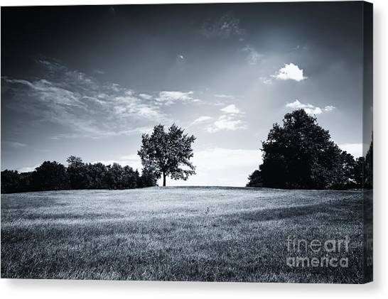 Hilly Black White Landscape Canvas Print