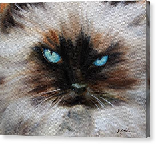 Himalayan Cats Canvas Print - Himalayan by Mary Sparrow