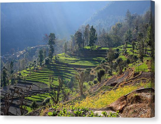 Himalayan Stepped Fields - Nepal Canvas Print