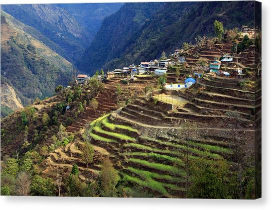 Himalayan Terraced Fields Canvas Print