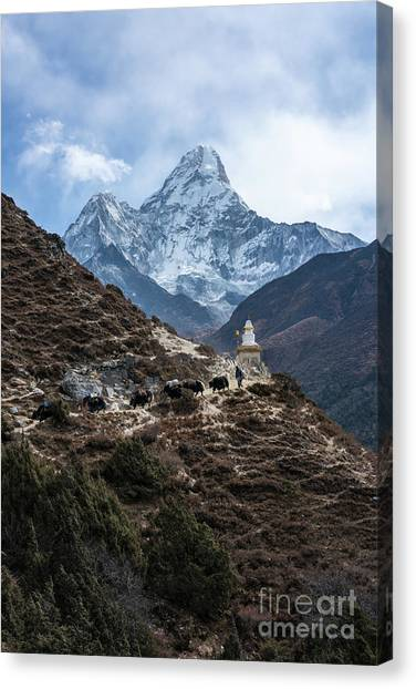 K2 Canvas Print - Himalayan Yak Train by Mike Reid