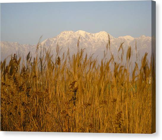 Hindu Kush Canvas Print - Hindu Kush Mountains Afghanistan by David M Porter