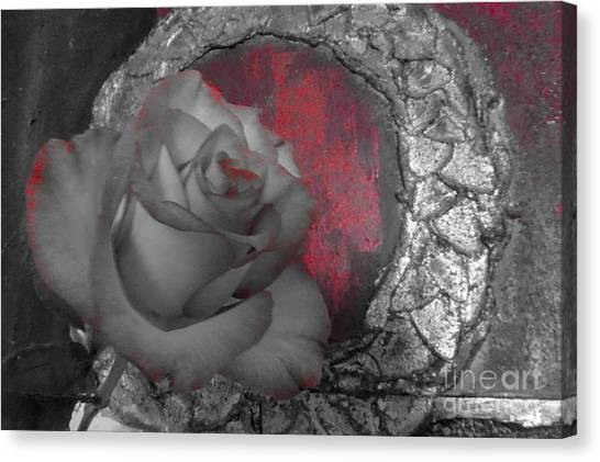 Hints Of Red - Rose Canvas Print