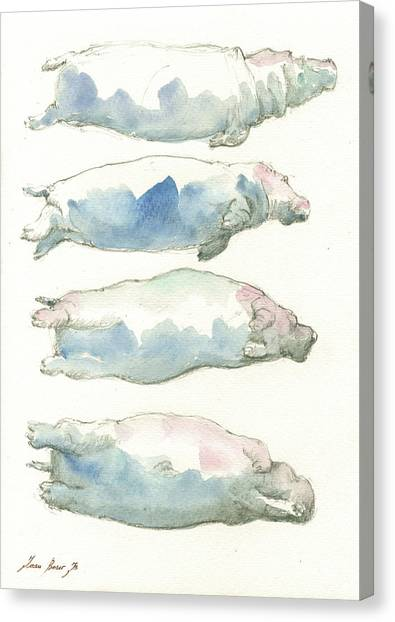Hippos Canvas Print - Hippo Swimming Study by Juan Bosco