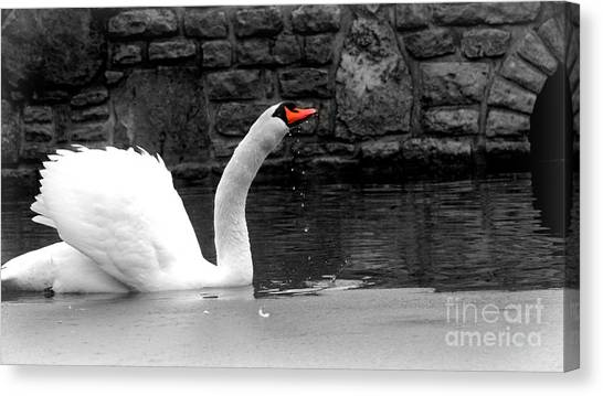 His Majesty On Ice Canvas Print
