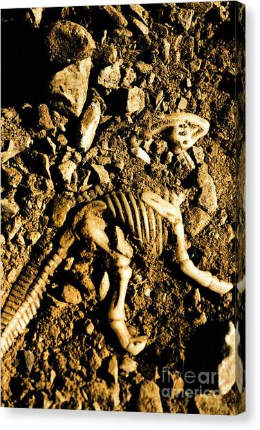 Geology Canvas Print - History Unearthed by Jorgo Photography - Wall Art Gallery