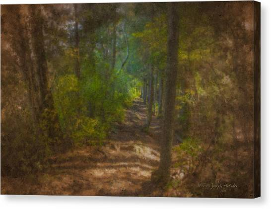 Hobbit Path Canvas Print