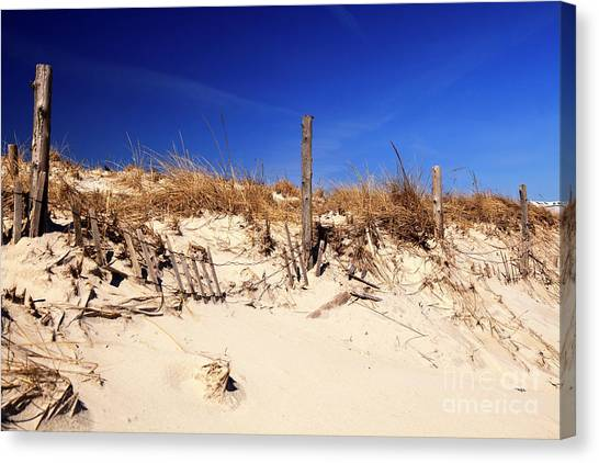 Holgate Beach Dune On Long Beach Island Canvas Print by John Rizzuto