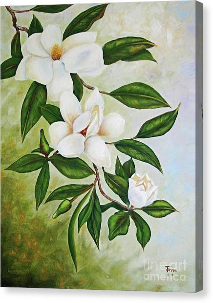 Holiday Magnolias Canvas Print