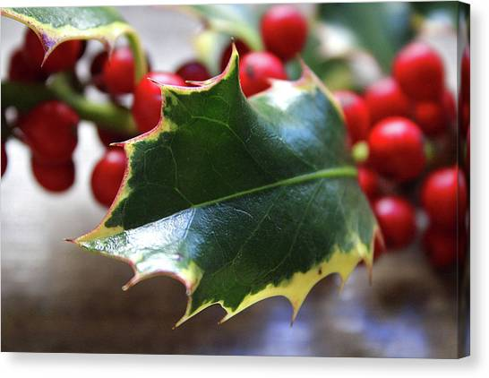 Berries Canvas Print - Holly Berries- Photograph By Linda Woods by Linda Woods