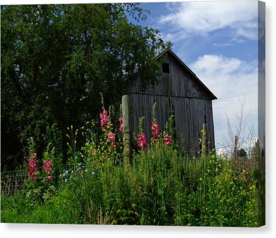 Hollyhock Barn Canvas Print