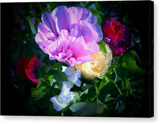 Hollyhocks And Snapdragons  Canvas Print
