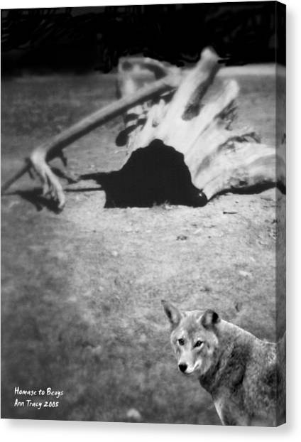Homage To Josef Beuys Canvas Print