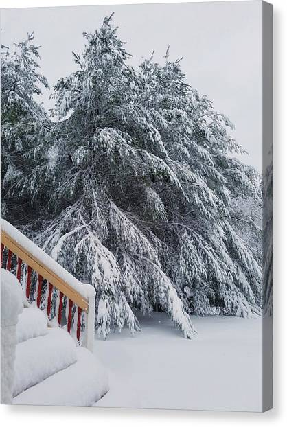 Home For The Blizzard Canvas Print