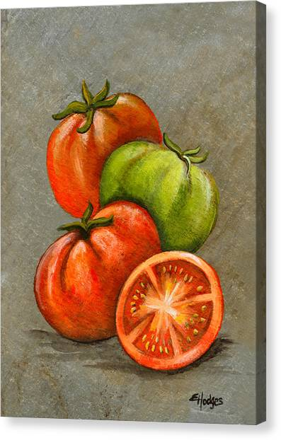 Tomato Canvas Print - Home Grown Tomatoes by Elaine Hodges