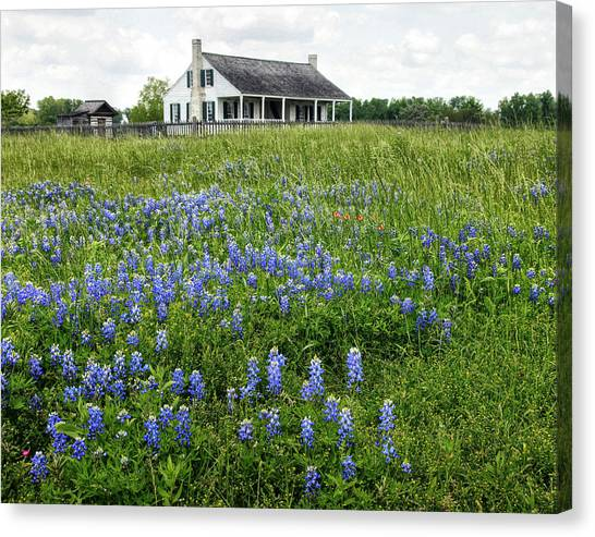 Homestead In East Texas Canvas Print