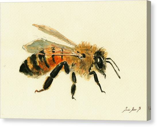 Bee Canvas Print - Honey Bee Painting by Juan  Bosco