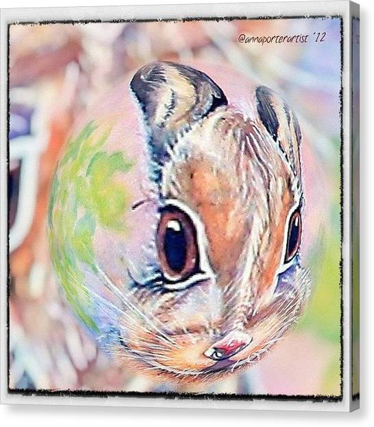 Rabbits Canvas Print - Honey Of A Bunny by Anna Porter