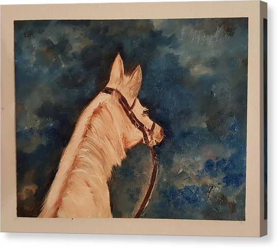 Honey Palomino Horse 28 Canvas Print
