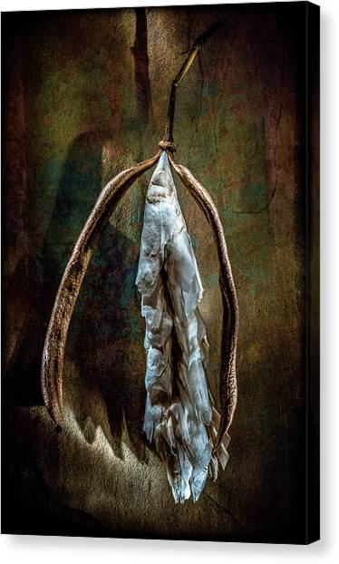 Canvas Print featuring the photograph Hong Kong Orchid Seed Pod 1 by Lou Novick