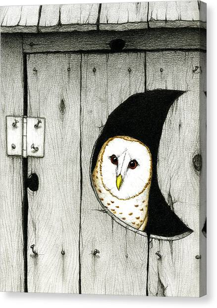 Owls Canvas Print - Hoo Tooted by Don McMahon