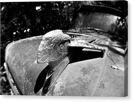 Hood Ornament Detail Canvas Print