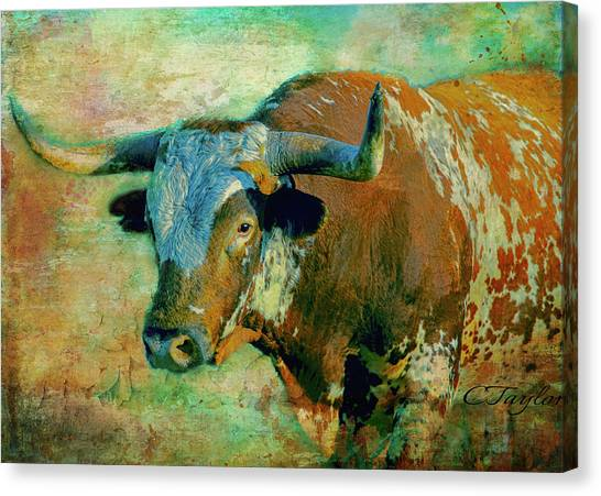Texas State University Texas State Canvas Print - Hook 'em 1 by Colleen Taylor