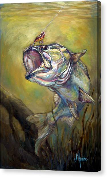 Freshwater Canvas Print - Hooked by Tom Dauria