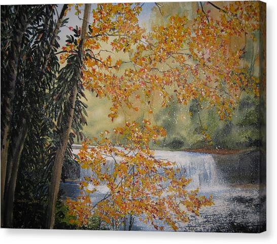 Hooker Falls Canvas Print by Shirley Braithwaite Hunt