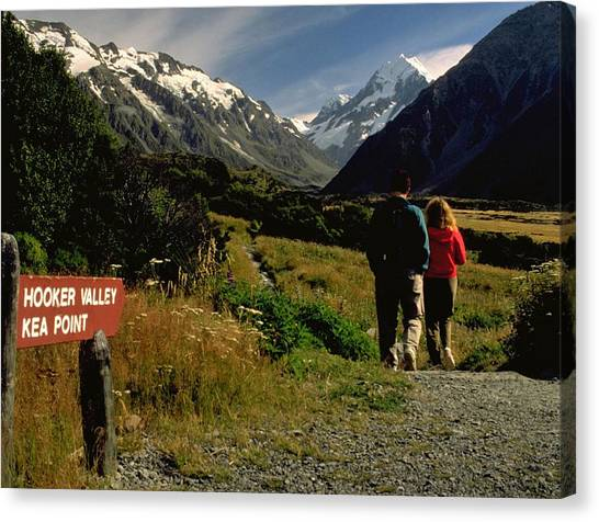 Green Travelpics Canvas Print - Hooker Valley Or Key Point by Travel Pics