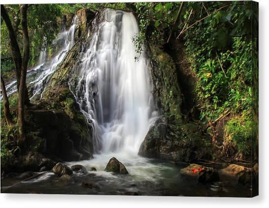 Hoopii Falls Canvas Print
