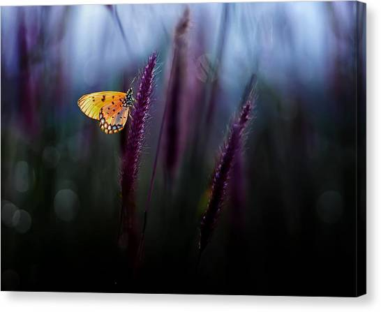 Bug Canvas Print - Hope by Erwin Astro