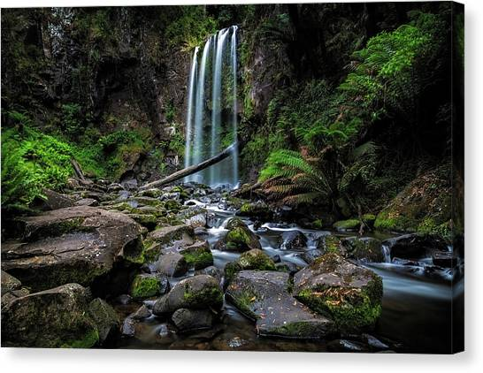 Great Otway National Park Canvas Print - Hopetoun Falls by Mark Lucey