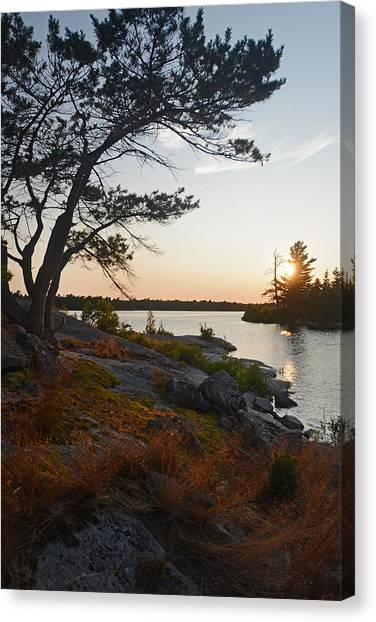 Hopewell Bay Island Wild Grass Sunset-1 Canvas Print