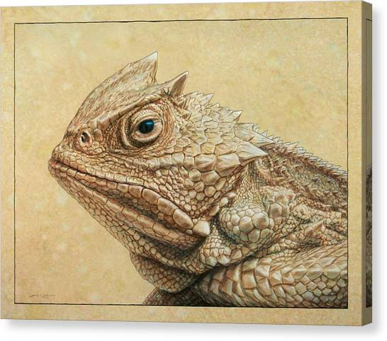 Lizard Canvas Print - Horned Toad by James W Johnson