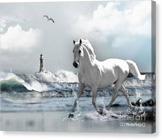 Horse At Roker Pier Canvas Print