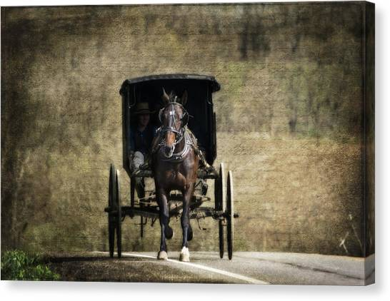 Bay Horse Canvas Print - Horse And Buggy by Tom Mc Nemar