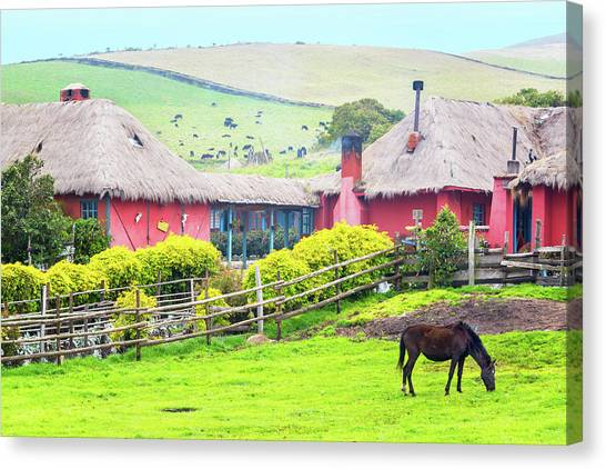 Cotopaxi Canvas Print - Horse And Hacienda by Jess Kraft