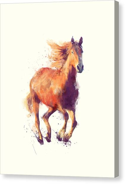 Horse Canvas Print - Horse // Boundless by Amy Hamilton