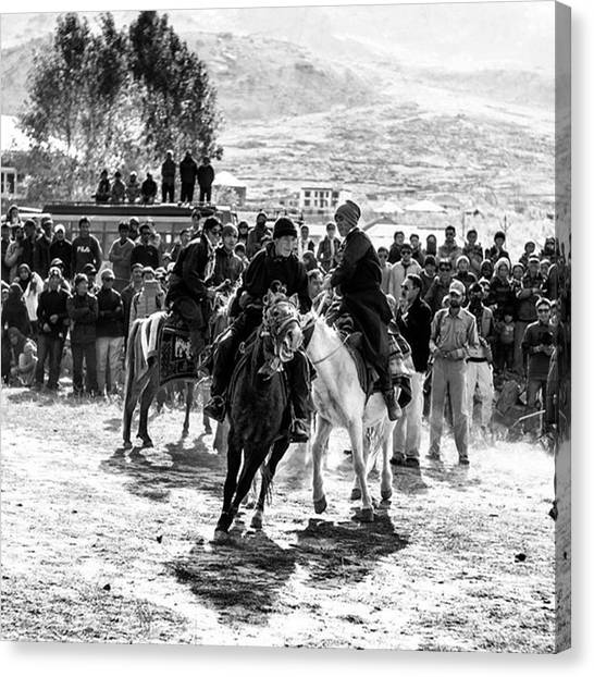 Race Horses Canvas Print - Horse Control, Zanskar, Jammu And by Aleck Cartwright