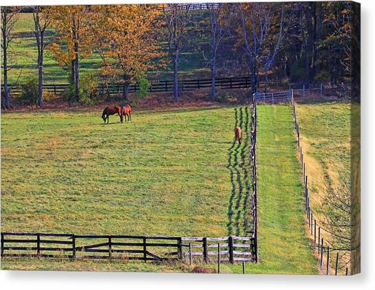 Horse Country # 2 Canvas Print
