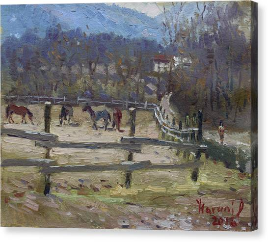 Villages Canvas Print - Horse Farm In Limana by Ylli Haruni