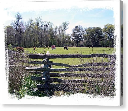 Horse Farm Canvas Print by Ralph  Perdomo