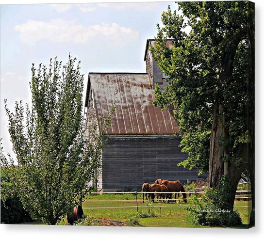 Horse Haven Canvas Print