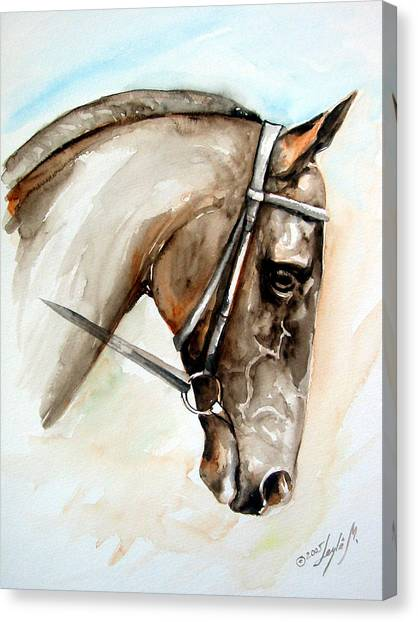 Head Canvas Print - Horse Head by Leyla Munteanu