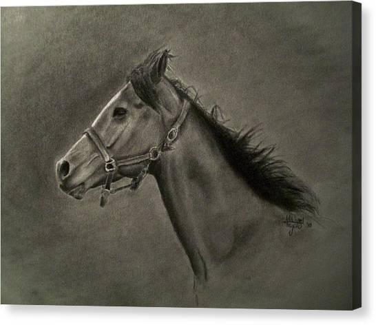 Horse Head Canvas Print by Michael Trujillo