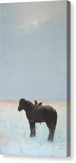 Horse In Snowfield  Canvas Print