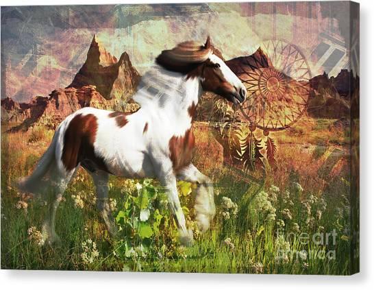 Horse Medicine 2015 Canvas Print