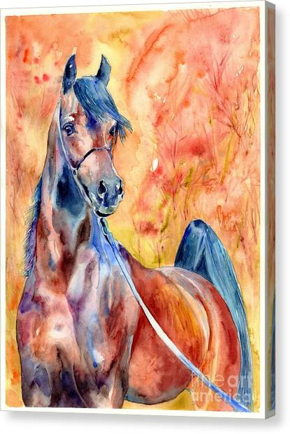 Fauvism Canvas Print - Horse On The Orange Background by Suzann's Art