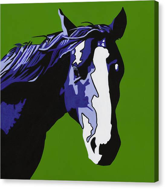Horse Play Blue Canvas Print by Sonja Olson